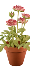 flower-pot-png-transparent-transparent-background-flowerpot-fake-428
